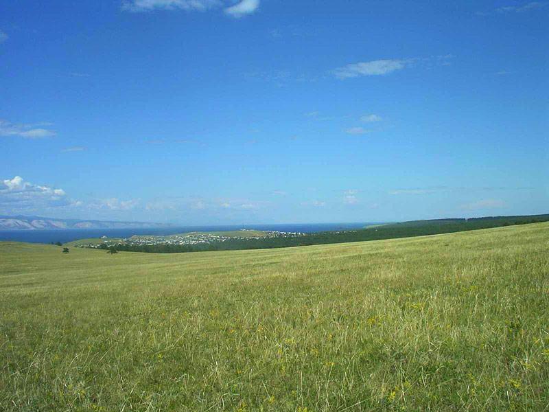 природные зоны россии степи коронкой извлекается прибором
