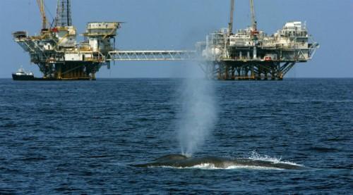 Доклад проблемы мирового океана 3641