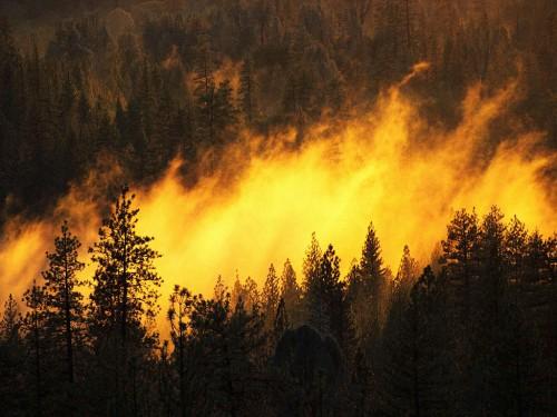 Стихийные бедствия на территории россии доклад 9969