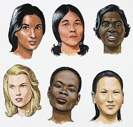 Почему на земле разные расы