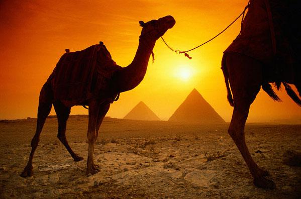Египет: конец триумфа причерноморского зерна?