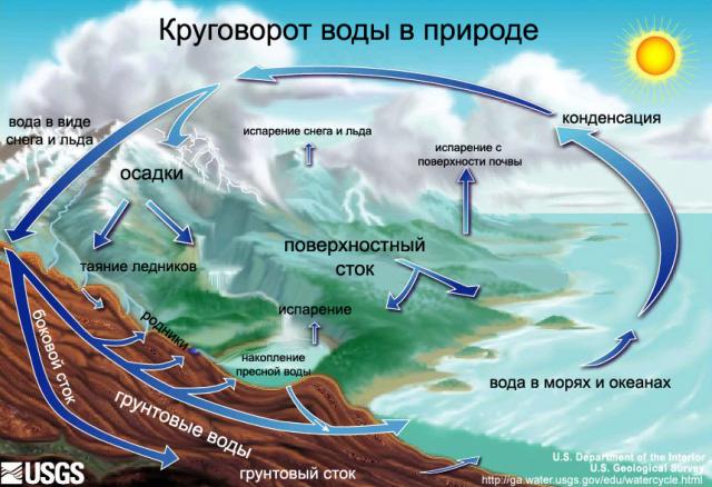 Значение воды в природе схема фото 90