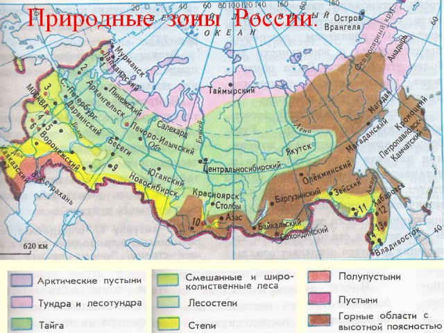 https://geographyofrussia.com/wp-content/uploads/2014/09/0004-004-Prirodnye-zony-Rossii-640x480.jpg