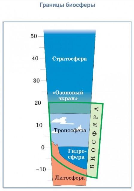 Биосфера класс Границы биосферы