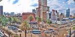 Джакаранда цветет в Найроби