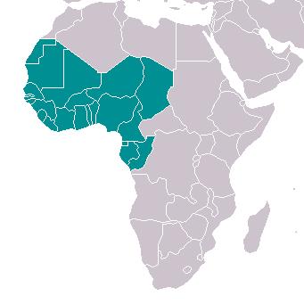 Французская западная африка купить 100 долларов