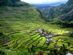 Рисовые плантации в Филиппинских Кордильерах