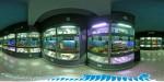 Аквариум-музей в Севастополе