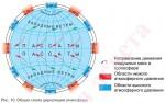 Общая схема циркуляции атмосферы